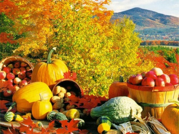 Eat-to-Stay-Healthy-This-Autumn-The-Food-We-Should-be-Eating-e1354028699522